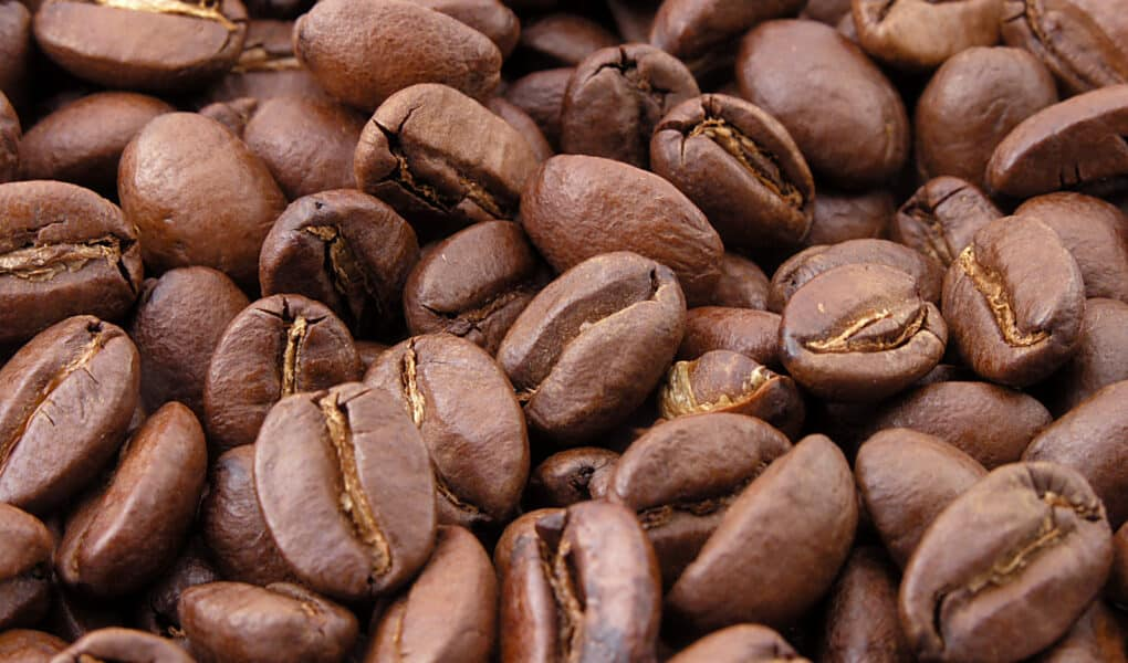 Mexico Coffee Beans